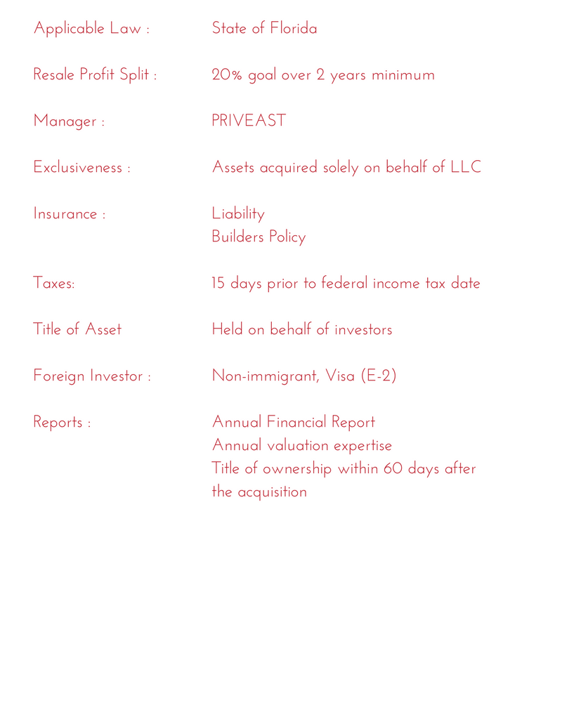 Structure of investment priveast